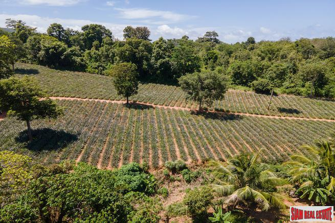 Mai Khao land for sale with spectacular views and gentle slope - 7 rai
