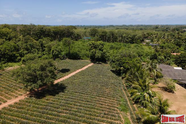 Mai Khao land for sale 2