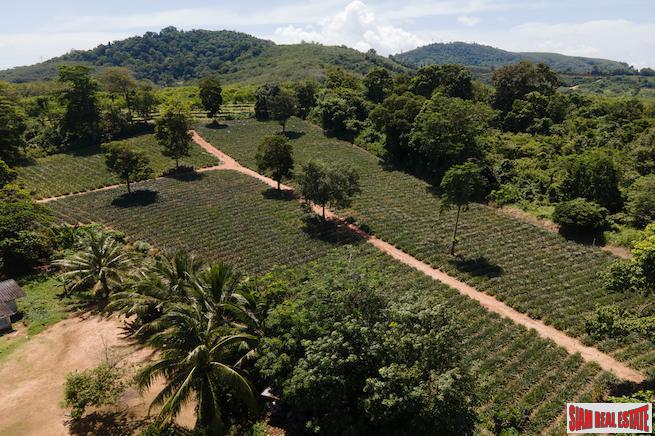 Mai Khao land for sale 3