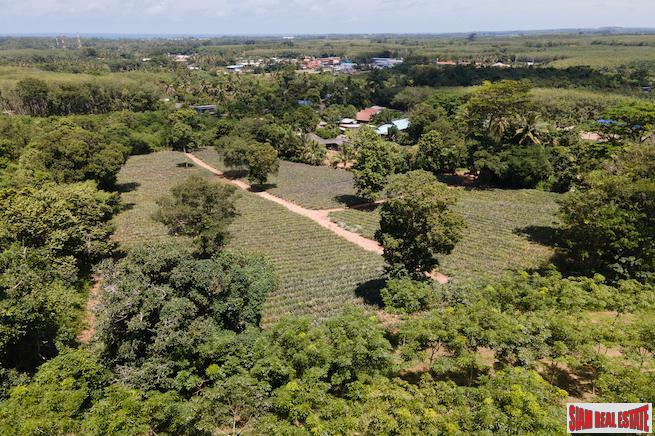 Mai Khao land for sale 5