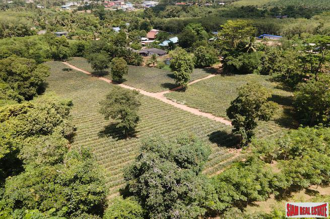 Mai Khao land for sale 6