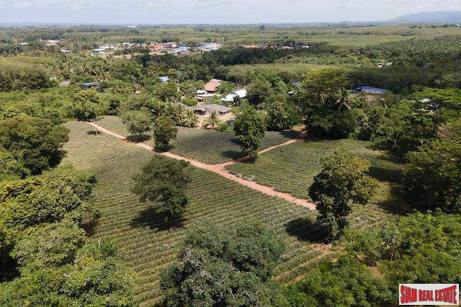 Mai Khao land for sale 7