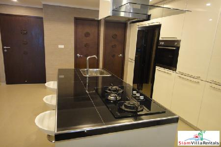 Spacious luxurious two bedroom in 4