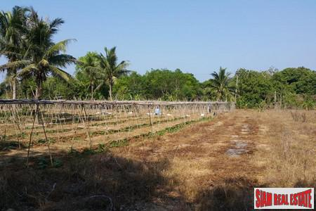 8+ Rai Good, Flat Land in Mai Khao