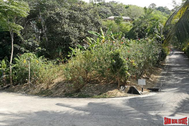 876 sqm Residential Plot in Bangtao, Sea-view possible