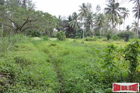 Plots of Land for Sale in Khao Lak with Road Access of Tarmac