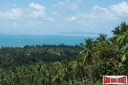 Sea View Land For Sale in Nathon