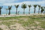 5 Rai Beach Front Land for Sale, Mai Khao, Phuket