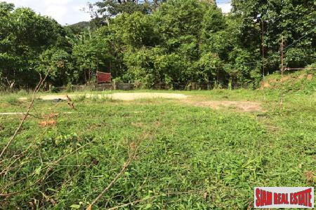Hillside Land for Sale in Kamala, Phuket