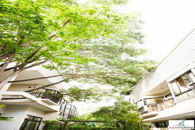 Peaceful and Beautiful Four Bedroom near BTS Thong Lo in Phra Khanong, Bangkok. Pets-friendly.