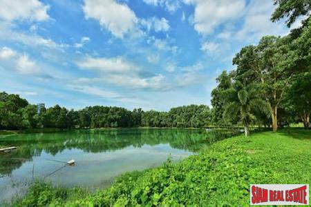 Lush and Tropical Land for Sale in Phang Nga, Thailand