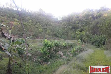 Large Land Plot for Sale in Beautiful Phang Nga
