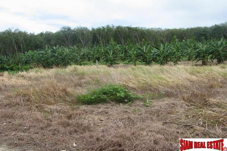 Small plots of land in Chalong