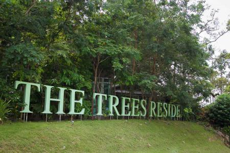 The Trees Residence | Bright 20