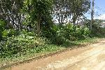 Extra Large Land Plot on Quiet Residential Street in Nai Harn
