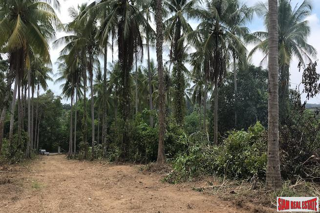 Large Land Plot near the Beach with Some Sea Views in Phang Nga