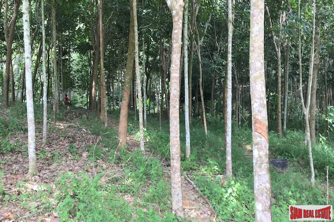 Investment Land with Spectacular Phang 5