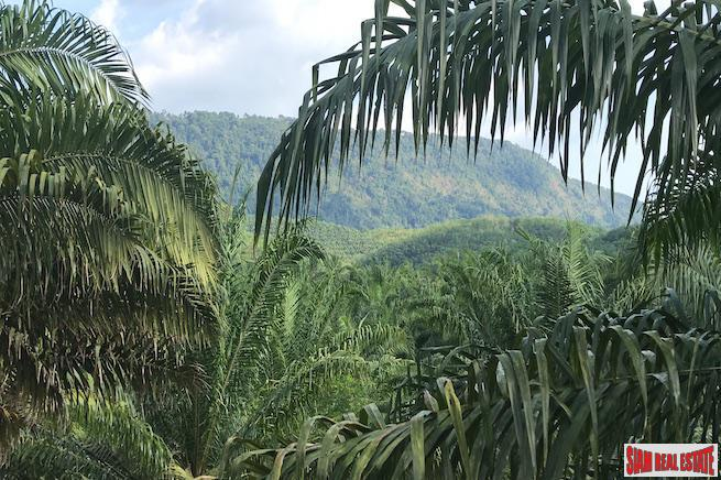 Lush Tropical  Land Plot with Gentle Slope in Takua Thung, Phang Nga