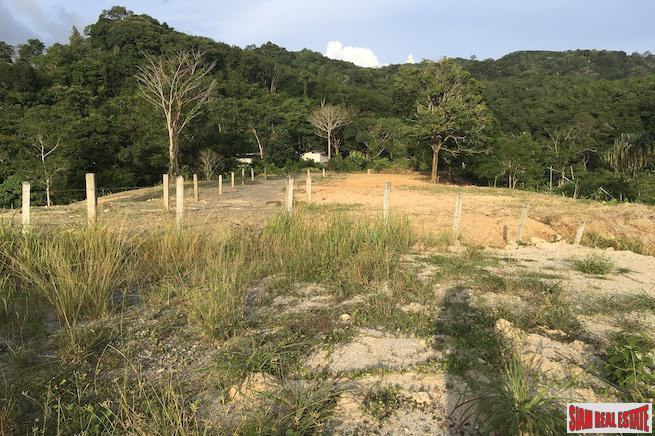 Hillside Land Plot Near Big Buddha and Many Local Amenities in Chalong