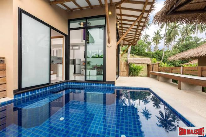 Beautiful Coconut Island One Bedroom Pool Villa