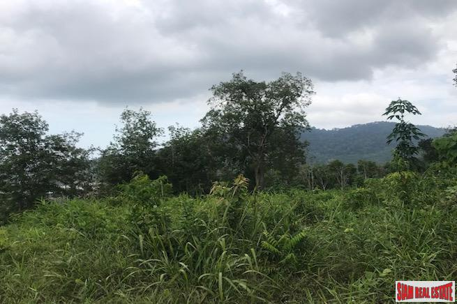 Large Hillside Land Plot with 2