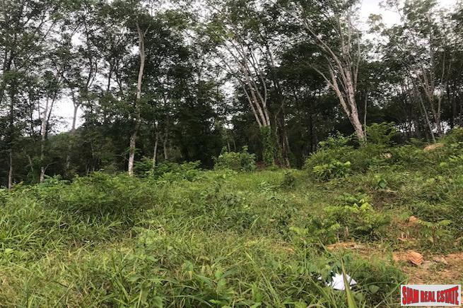 Large Hillside Land Plot with 3
