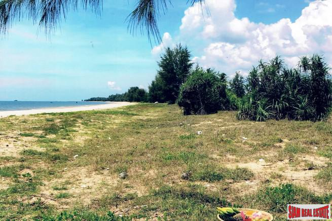 Six Special Beachfront Land Plots 7