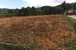 Large Flat Land Plot for Sale Near Heroines Monument in Pa Klok - Build up to 16 villas