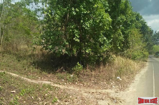 Lush Land Plot for Sale on Hillside with Mountain Views in Nong Thaley, Krabi