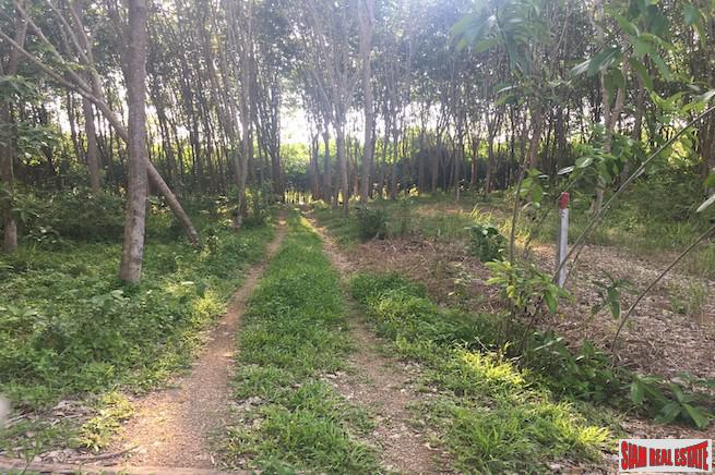 One Rai Land with a Rubber Plantation for Sale Close to Amenities in Sai Thai, Krabi