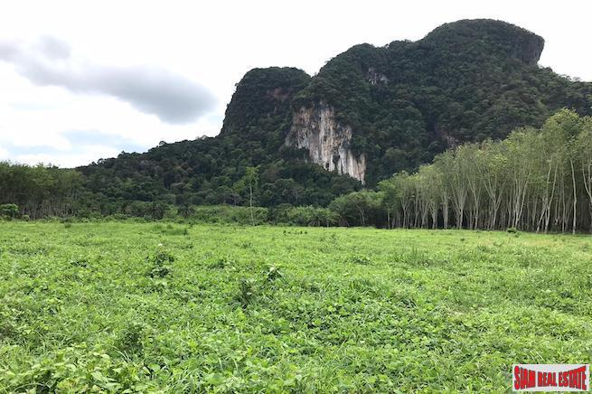 Over 16,000 sqm of Land for Sale in Nong Thaley, Krabi