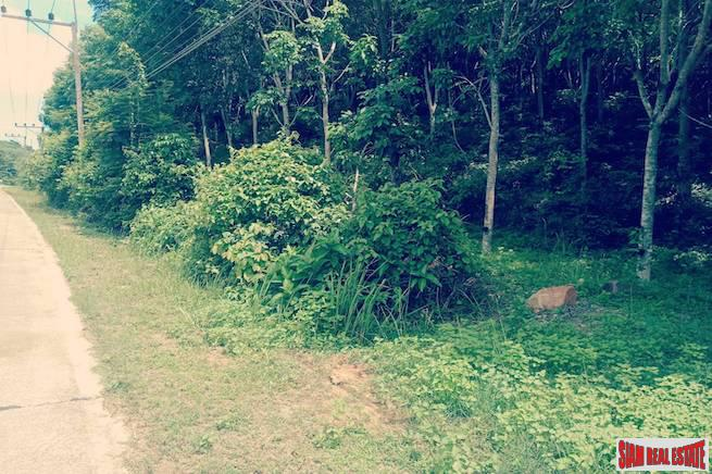 Easy Sloping Land Plot with Sea Views of Phang Nga Bay and Facing West on Koh Yao Yai