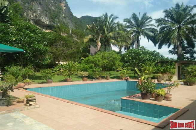 Lovely Three Bedroom Garden House with Private Pool and Fruit Plantation in Khao Thong