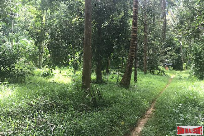 Large Land Plot Over 3 Rai with Mountain Views and Fruit Trees for Sale in Krabi
