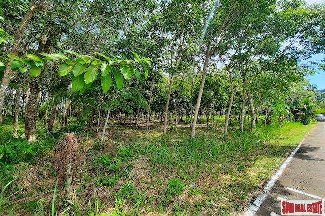 3,852 sqm Flat Land Plot Close to Ao Por Grand Marina and Main Road in Paklok