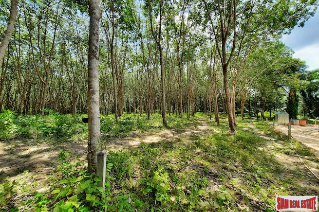 Over Four Rai of Land for Sale in Developing Area of Nong Thaley