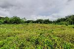 Over One Rai of Land for Sale in a Prime Cherng Talay Location and Near the Laguna Development