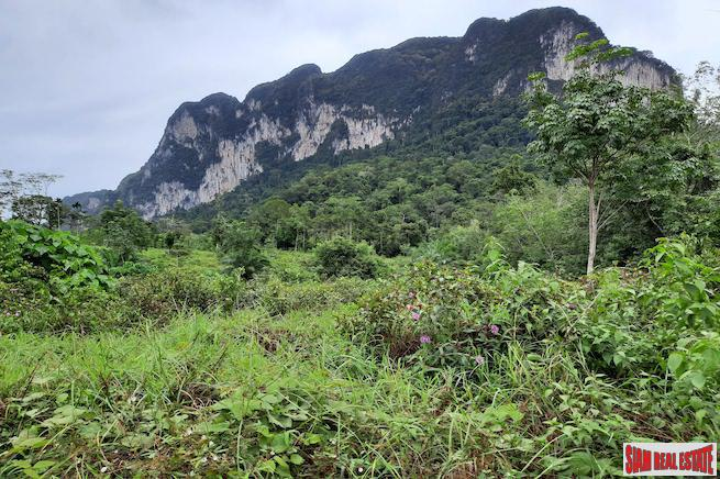 Over 16 Rai of Land for Sale in Khao Thong with Beautiful Krabi Mountain Views
