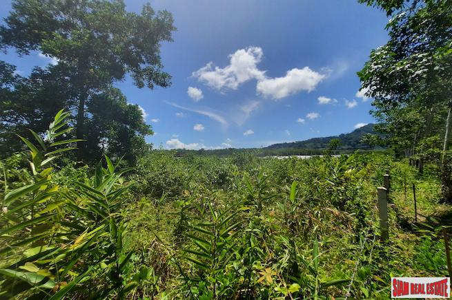 Prime Land Plot Near Main Phuket Road for Sale in Thalang