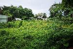 Two Rai Land Plot for Sale only 5 Minutes to Bang Tao Beach - Can be Sold in One Rai Plots