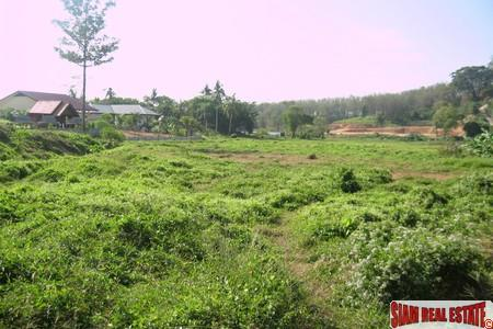 6.5 Rai of Prime Land For Sale in Nai Harn, Phuket