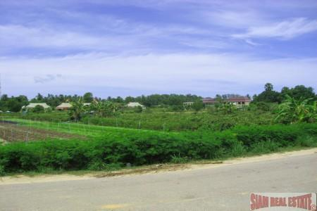 Looking for Prime Development Land in Rawai? Grab it while its HOT!