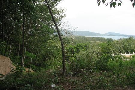 11.5 Rai of Hillside Land 4