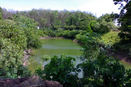 Over 12 Rai of Land For Sale within Natural Surroundings at Thalang, Phuket