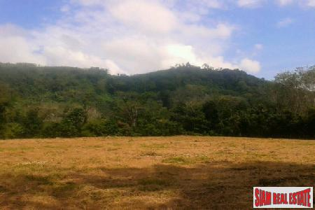 6 Rai of Land of cleared flat land for Sale at Paklok