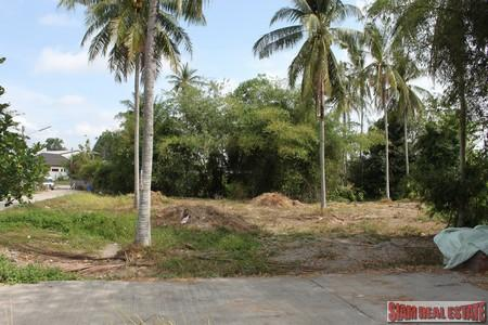 3Ngan 67.8TLW of Land For Sale Bang Jo