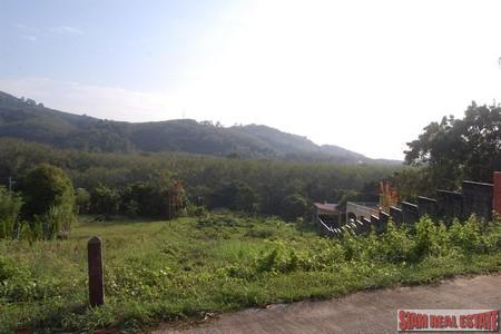 1,428sqm of Mountain View Land For Sale at Chalong