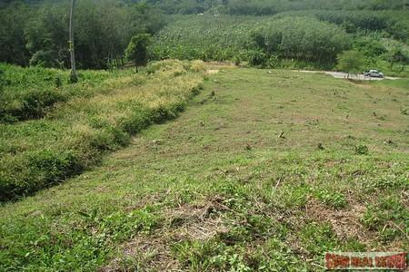 9988 Sq.m. of Land with 8