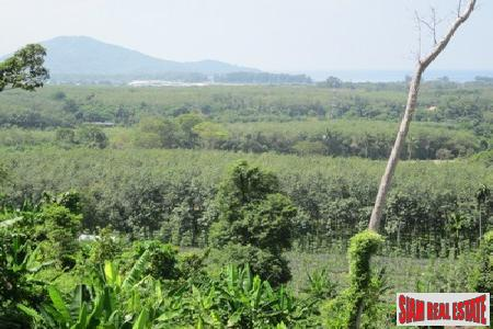 1.25 Rai of Land with Sea Views in Mai Khao
