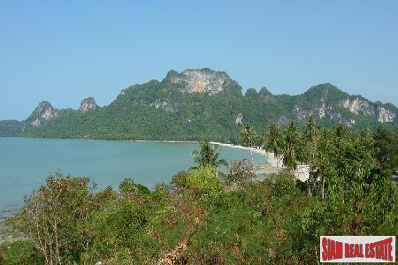 8 Rai Beachfront and Sea View Land in Donsak